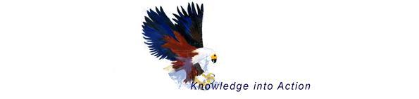 Velthuizen Knowledge Management Associates. Knowledge into Action